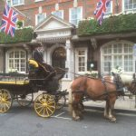 Horses in London