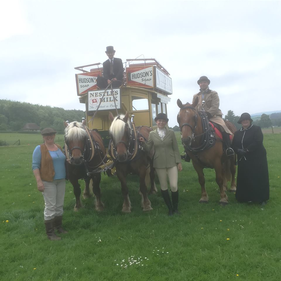 Heavy horse show - weald and Downland