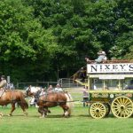 Weald and Downland – Heavy Horse Show